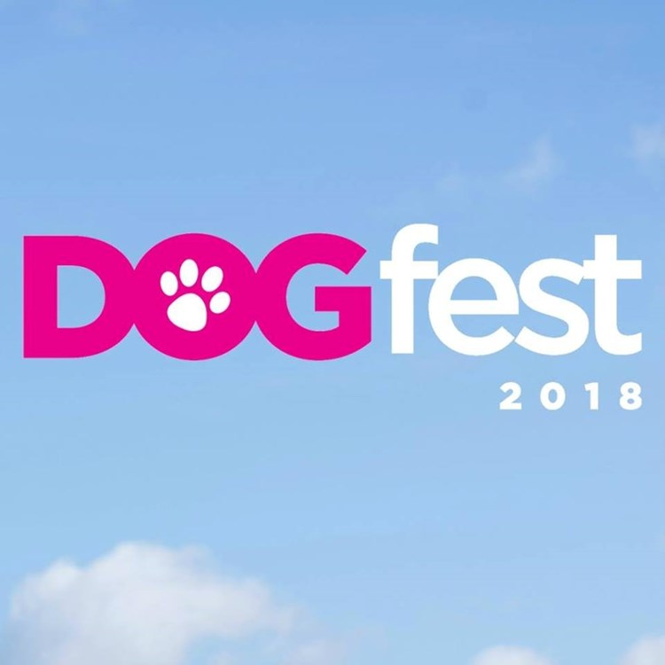 Image result for dogfest knebworth